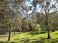 Camping place at Satyanand Yoga Rocklyn Ashram, Australia.jpg