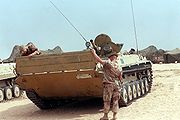 Captured Iraqi BMP-1
