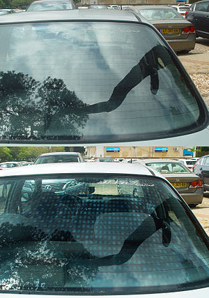 Toughened glass - Image: Car Window Polarization