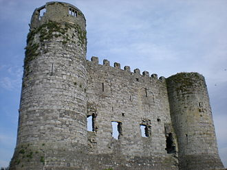 Siege of Waterford - Carlow Castle