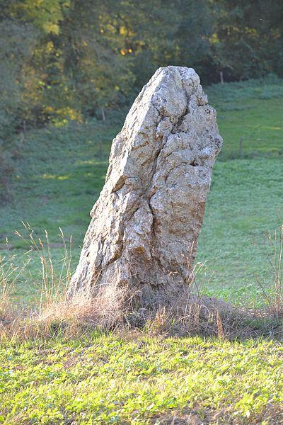 Menhir du Bodel à Caro  (56).