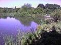 Carr Forge Dam - geograph.org.uk - 546905.jpg