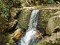 Cascada I.JPG