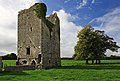 Castles of Munster, Ballybeg, Tipperary - geograph.org.uk - 1542301.jpg