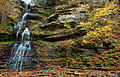 Cathedral-waterfalls-midland-trail-wv - Virginia - ForestWander.jpg
