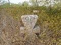 Cemetery in Vasylivka 9.jpg