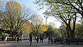 Central Park, New York, NY, USA - panoramio (124).jpg