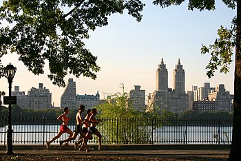 English: Jogging in Central Park (New York Cit...