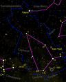 Cepheus constellation map negative.png