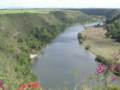 Chavon-rio.png