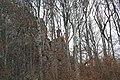 Cheile Vârghișului - Varghis Gorges - panoramio (1).jpg