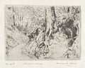 Chemin creux, print by Armand Apol (1879-1950), Belgium, (1914), Prints Department of the Royal Library of Belgium, S.IV 109464.jpg