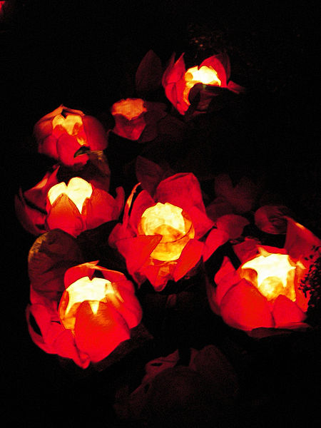 File:Chinese floating lotus lanterns.jpg