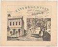 City drug store, John F. Patton & Co... LCCN2003677664.jpg