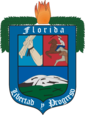 نشان رسمی Florida Department