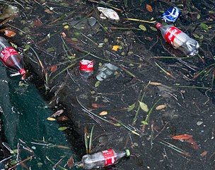 Coca-Cola bottles as pollution in water