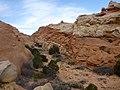 Cohab Canyon , DyeClan.com - panoramio (6).jpg