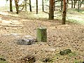 Column - panoramio.jpg