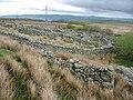 Complex sheepfold - geograph.org.uk - 411844.jpg