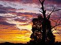 Condo Sunset - panoramio.jpg