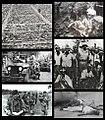 Congo Crisis collage.jpg