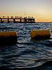 Coogee Beach gnangarra-215.jpg