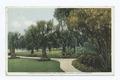 Corner of Rose Garden, New Ocklawaha Hotel, Eustis, Florida (NYPL b12647398-79301).tiff