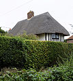 Cottage hedge Goodnestone Dover Kent England.jpg