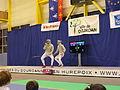 Coupe du Monde juniors Dourdan - 18.JPG