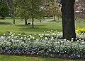 Courtenay Park, Newton Abbot - geograph.org.uk - 1265274.jpg