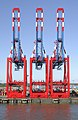 Cranes in the Port of Bremerhaven.jpg