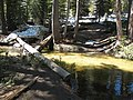 Creek ford on the Pohono Trail - panoramio.jpg