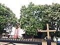 Crkva brvnara Svete Trojice, Selevac 03.jpg