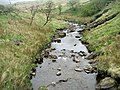 Croasdale Brook - geograph.org.uk - 1278118.jpg