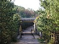 Crowthorne Bypass - geograph.org.uk - 1181929.jpg