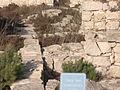 Culture of The Samaritans on Mount Gerizim 257.jpg