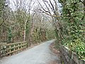 Cutting on the Plym Valley cycle way - geograph.org.uk - 154275.jpg