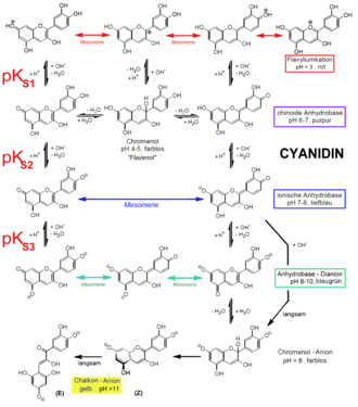 Anthocyanidin - Stability of anthocyanidins is dependent on pH.