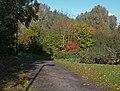 Cycleway across Riverside Park - geograph.org.uk - 1022336.jpg