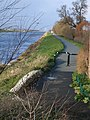 Cycleway at Higher Ferry - geograph.org.uk - 288604.jpg