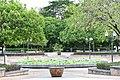 D85 9578 Plant of Thailand.jpg