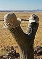 DSC03013 - NAMIBIA 2010 (31454823153).jpg