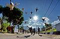 DSC 4047 wikimedia2020 deni dahniel Pacu Itik Terbang.jpg