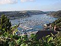 Dart Marina, Kingswear, looking upstream - geograph.org.uk - 1535197.jpg