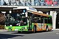 Day 1 - bus (32847386858).jpg