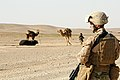 Defense.gov News Photo 120310-A-PS391-077 - Cpl. Theodore Criswell with 2nd Battalion 11th Marines stands guard at a checkpoint in Helmand province Afghanistan on March 10 2012.jpg