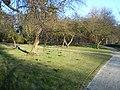 Delft - 2013 - panoramio (460).jpg
