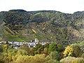 Der Bremmer Calmont im Landschaftsschutzgebiet Moselgebiet von Schweich bis Koblenz (4).jpg
