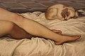 Detalle Venus Urbino 02.jpg