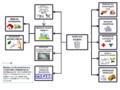 Diagrama Resíduos Sólidos.png